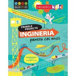 Primele proiecte: Ingineria...